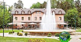 فندق المجر (1)