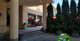 فندق بارك (7)