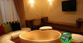 فندق دوبروفنيك (15)