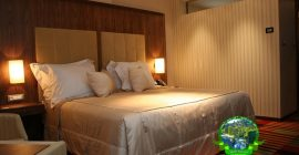 فندق دوبروفنيك (7)