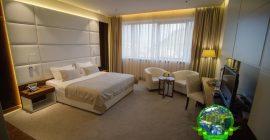 فندق ميباس (3)