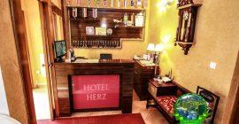 فندق هيرك (6)