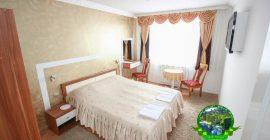 فندق هيرك (9)