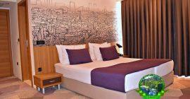 فندق هيكو ديلوكس (10)