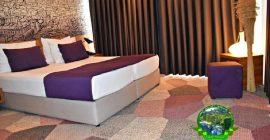 فندق هيكو ديلوكس (11)