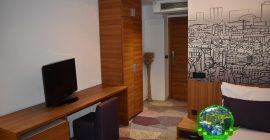 فندق هيكو ديلوكس (9)